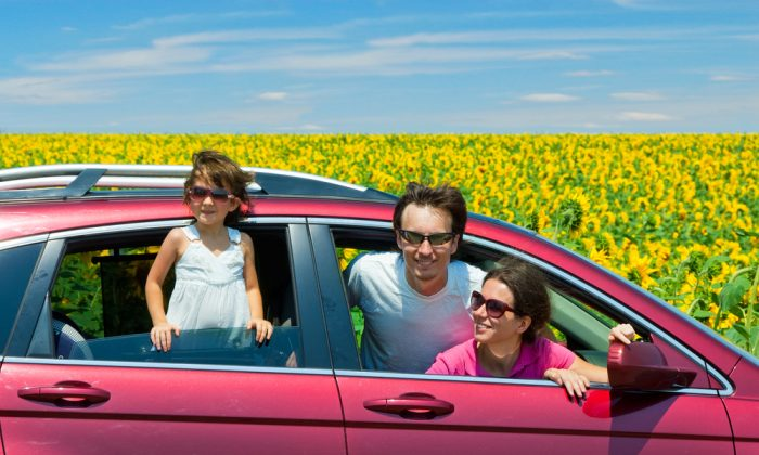 The most beneficial auto rental deals in FL